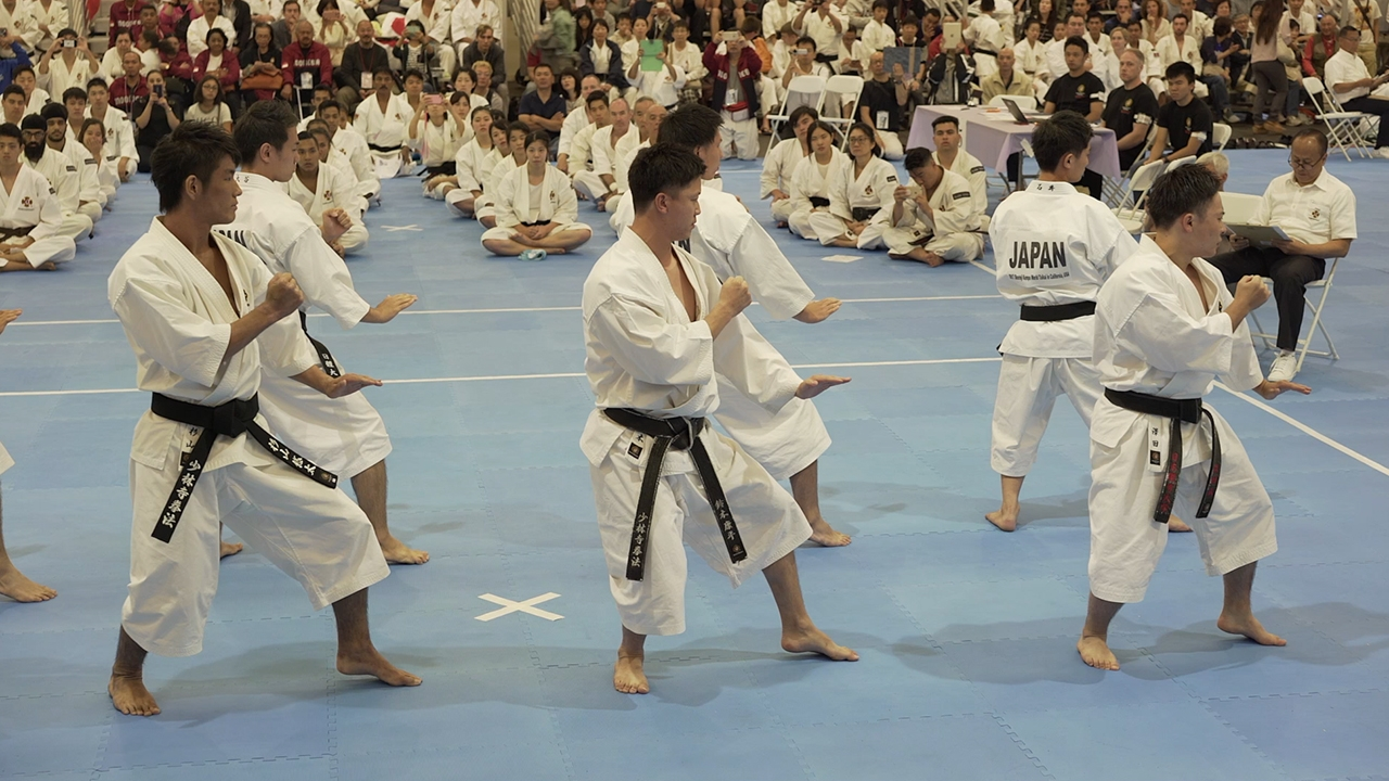 Preview: Shorinji Kempo 70 Years